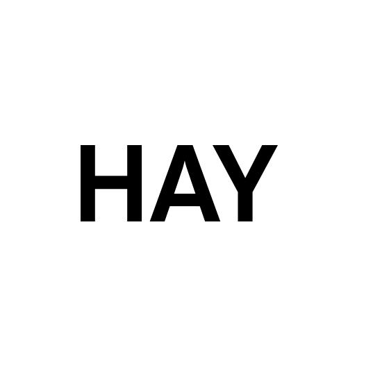 Logo Hay 1 1